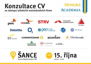 konzultace CV